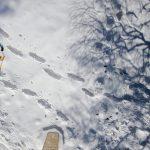escursione sulla neve con le ciaspole