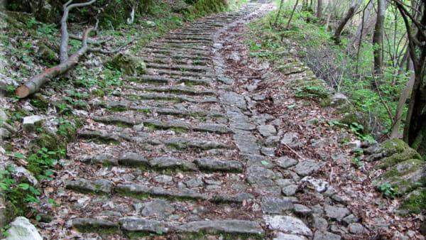 sentiero di alonte